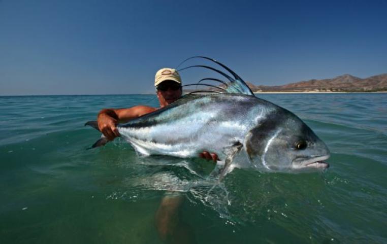 baja flyfishing company baja flyfishing company
